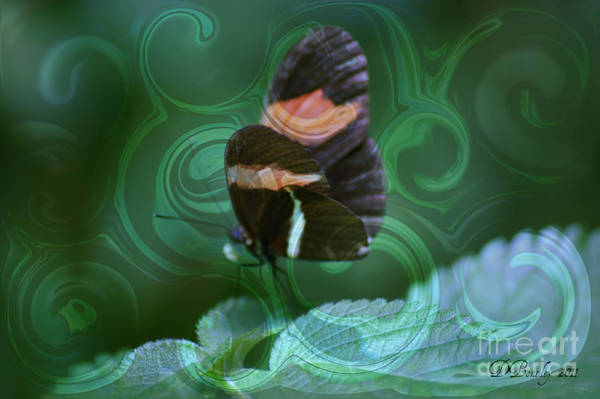 Photograph - Butterfly Tenderness by Donna Bentley