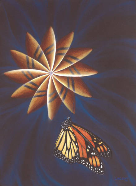 Butterfly Touching The Closed Portal Art Print
