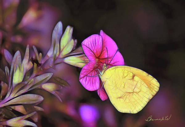 Digital Art - Butterfly Treats by Bonnie Willis