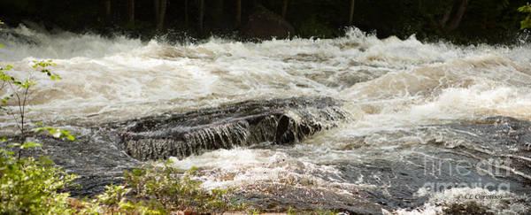 Photograph - Buttermilk Falls Bubbles by Carol Lynn Coronios