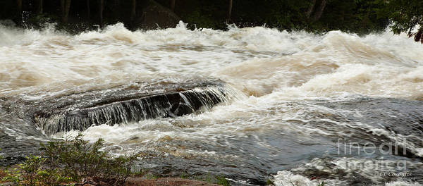 Photograph - Buttermilk Falls Froth by Carol Lynn Coronios