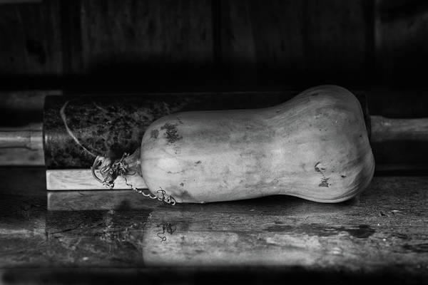 Cucurbit Photograph - Butternut On The Side by Susan Capuano