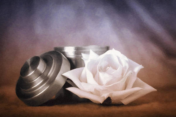 White Rose Photograph - By Any Other Name by Tom Mc Nemar