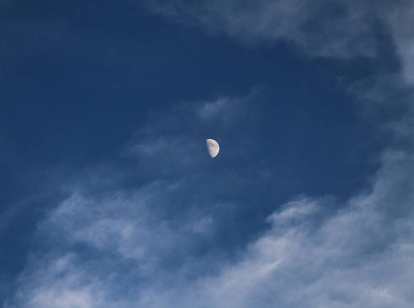 Photograph - By The Light Of The Moon by Bonnie Follett