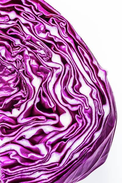 Photograph - Cabbage Head by Teri Virbickis