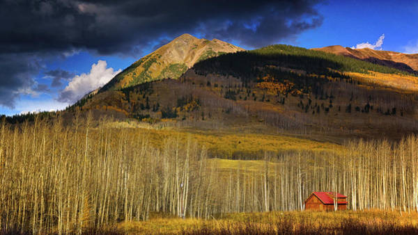 Photograph - Cabin Among The Aspen by John De Bord