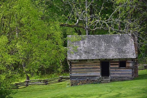 Cabin At Zebulon Vance Birthplace Art Print