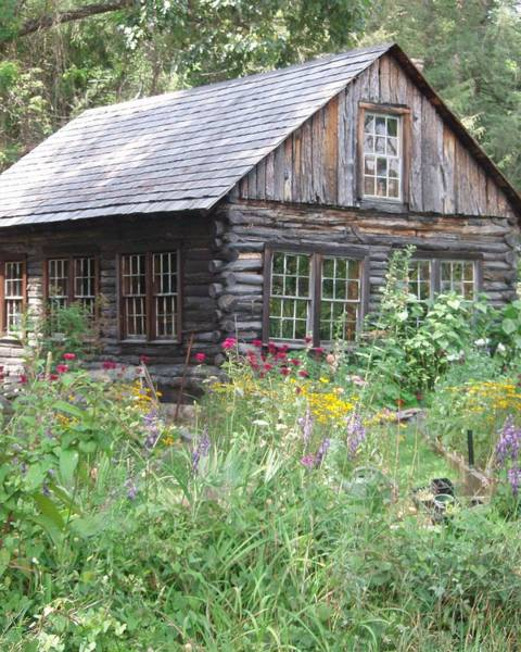 Photograph - Cabin In The Woods by Allen Nice-Webb