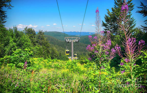 Photograph -  Cable Car In Black Forest Region, Belchen Mountains by Ariadna De Raadt