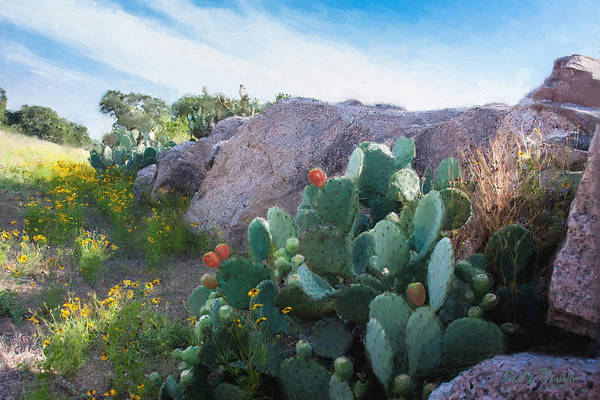 Prickly Pear Wall Art - Painting - Cactus And Granite    9234 by Fritz Ozuna