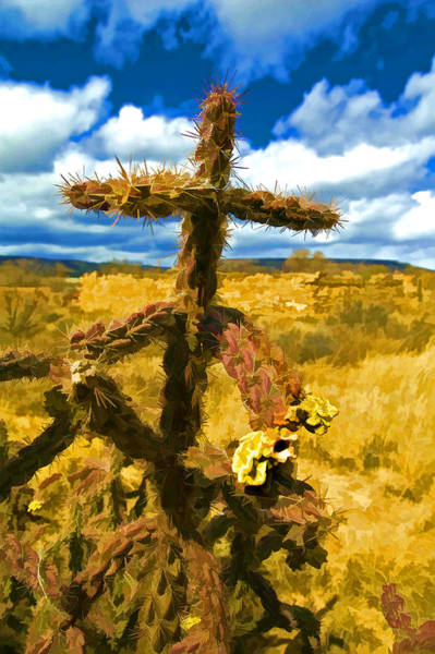 Wall Art - Photograph - Cactus Cross by Lou  Novick
