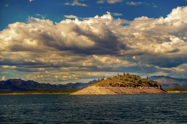 Photograph - Cactus Island by Robert FERD Frank