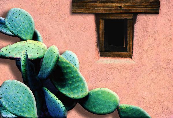 Southwest Digital Art - Cactus by Paul Wear