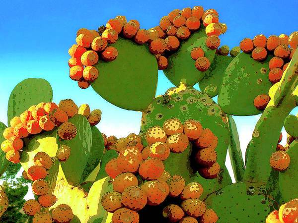 Mixed Media - Cactus Pears by Dominic Piperata