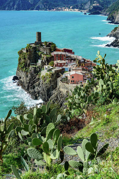 Photograph - Cactus, Turquoise Water And Village Of Corniglia, Cinque Terre, Italy by Global Light Photography - Nicole Leffer