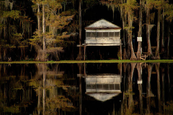 Photograph - Caddo Lake Boathouse by David Chasey