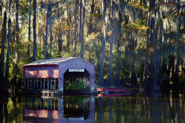 Wall Art - Photograph - Caddo Lake Paintings by Lana Trussell