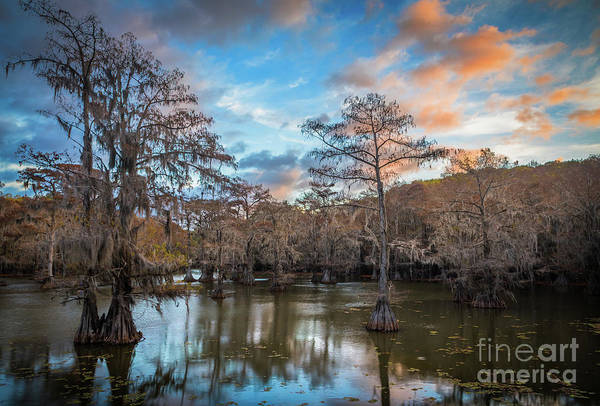 Photograph - Caddo Lake Sunrise by Inge Johnsson