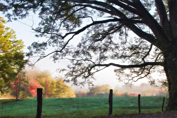 Wall Art - Photograph - Cades Cove Autumn Morning by Lana Trussell
