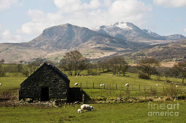 Photograph - Cadre Idris In Winter - Snowdonia Wales Uk by Keith Morris