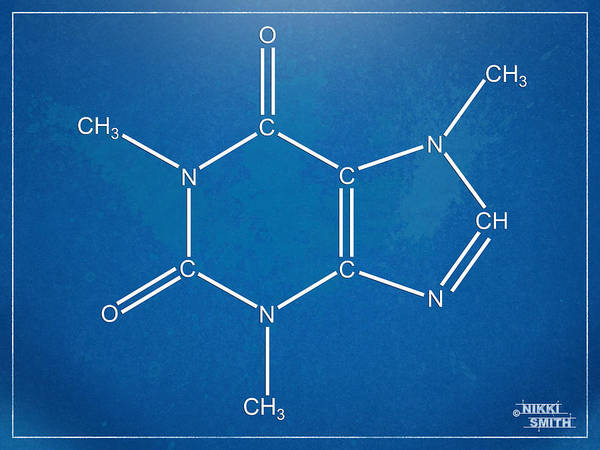 Digital Art - Caffeine Molecular Structure Blueprint by Nikki Marie Smith
