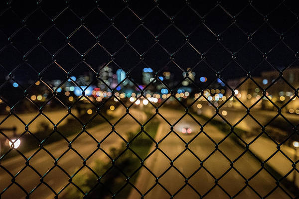 Photograph - Caged In The Urban Jungle by Randy Scherkenbach