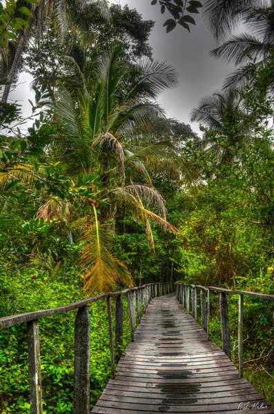 Cahuita Photograph - Cahuita Bridge by Robert Kaler