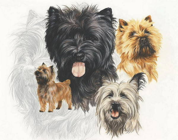 Wall Art - Mixed Media - Cairn Terrier Revamp by Barbara Keith