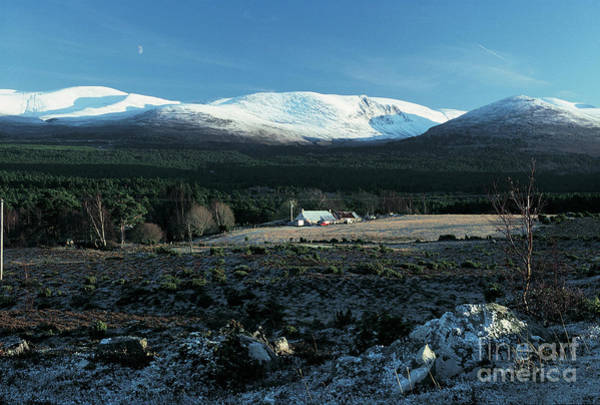 Photograph - Cairngorm Mountains From Whitewell by Phil Banks