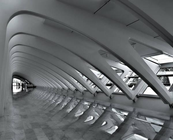 Calatrava 3 Art Print
