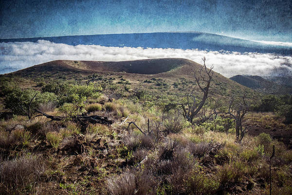 Photograph - Caldera On The Flank Of Mauna Kea Hawaii by Mary Lee Dereske
