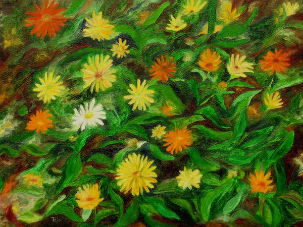 Painting - Calendula by FT McKinstry