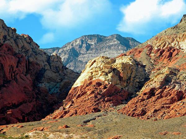Photograph - Calico Basin Nevada by Frank Wilson