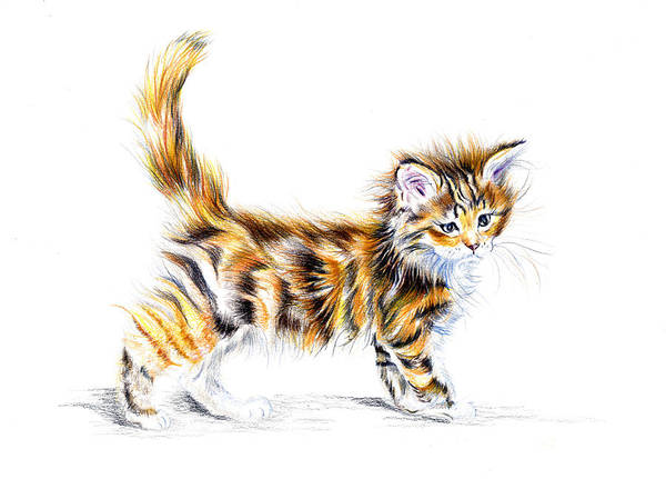 Wall Art - Painting - Calico Kitten by Debra Hall