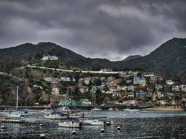 Photograph - California - Catalina Island 008 by Lance Vaughn