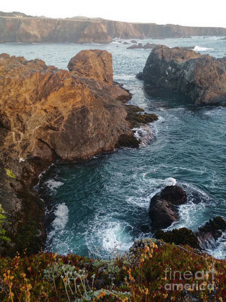 Photograph - California Coast Mendocino by Gregory Dyer