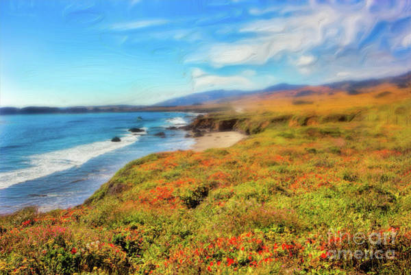 California Coast Wildflowers On Cliffs Ap Art Print by Dan Carmichael