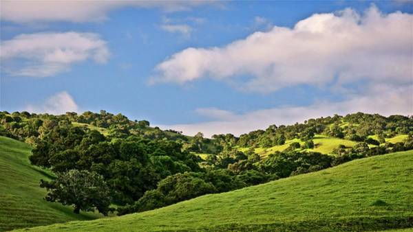 Photograph - California Coastal Hills, East Of Monterey by Flying Z Photography by Zayne Diamond