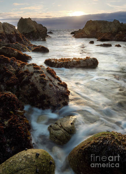 Photograph - California Coastline Sunset, Pacific Grove, Ca  #40105-07-10 by John Bald