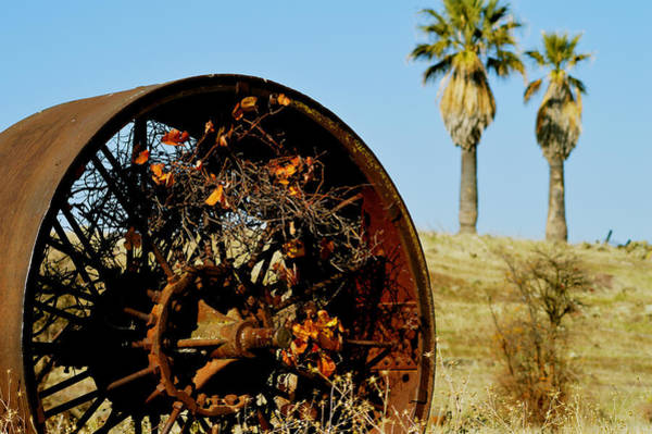Coolie Photograph - California Country by Pamela Patch