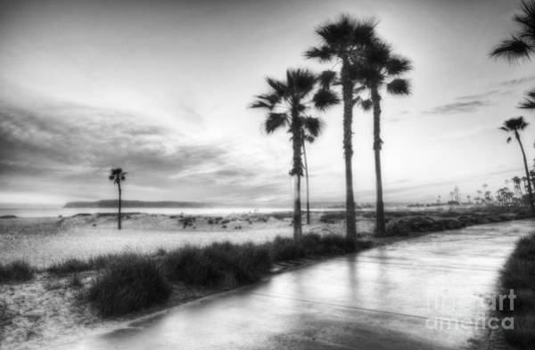 Photograph - California Dreaming Bw by Mel Steinhauer