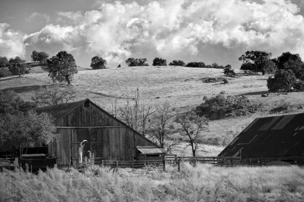 Photograph - California Farmland - Black And White by Peter Tellone