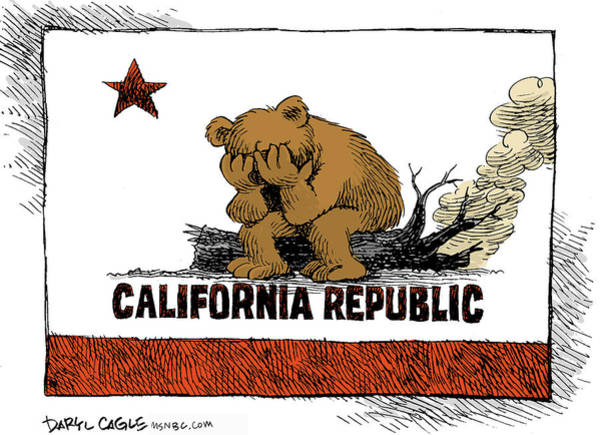 Drawing - California Fire Bear Grieves by Daryl Cagle