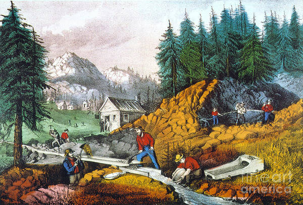 Nathaniel Photograph - California: Gold Mining by Granger