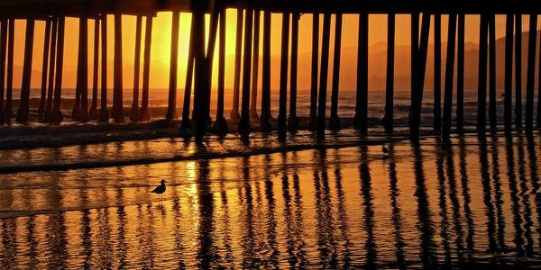 Photograph - California Gold, Pismo Beach Pier, California by Flying Z Photography by Zayne Diamond