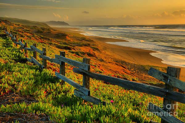 Photograph - California Golden Glow by Adam Jewell