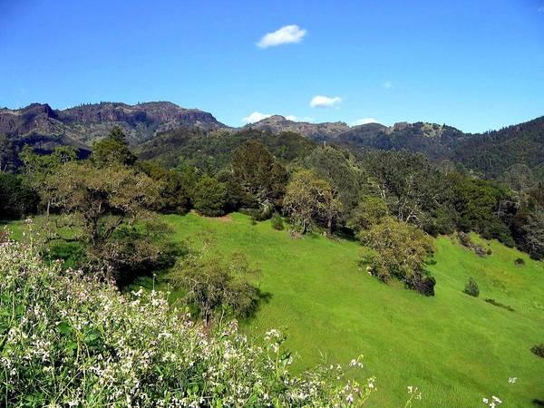 Photograph - California Highlands by Will Borden