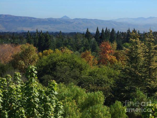 Photograph - California Hills Photograph by Kristen Fox