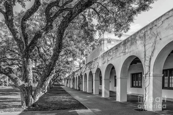 Wall Art - Photograph - California Institute Of Technology Campus Trees by University Icons