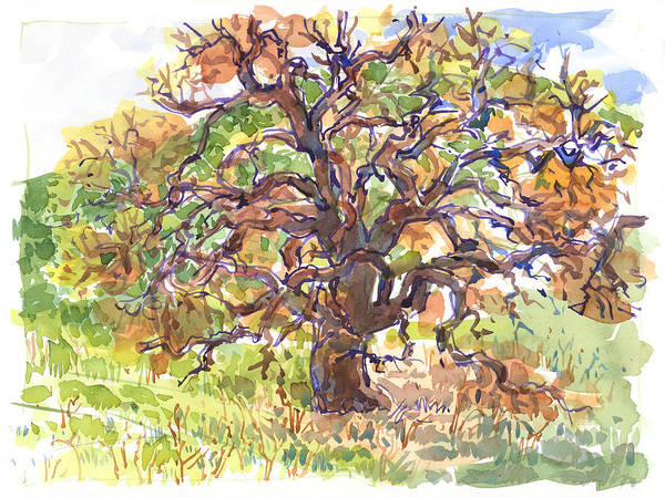 Painting - California Oak In Winter by Judith Kunzle